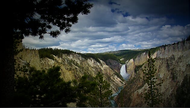 Lower Falls-Yellowstone National Park