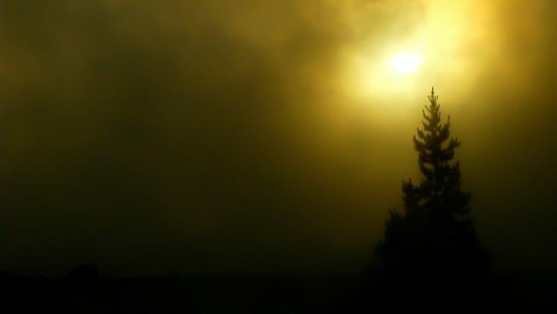 Yellowstone_Fog