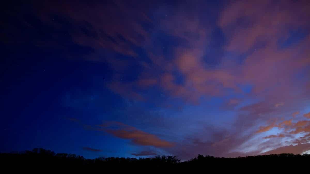 good_earth_night